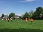 15 Regiofinales 2017-05-17 45e Succes Schoolvoetbaltoernooi Hobbit C (2).jpg